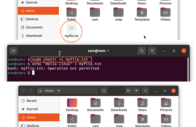 Chattr command in Linux